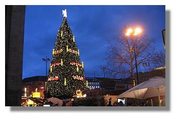 [Foto:weihnachtsbaum.jpg]