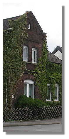 [Foto:hollandstrasse.jpg]