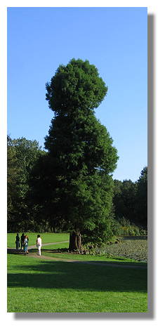 [Foto:picknick-im-park-bodelschwingh-denkmaltag.jpg]