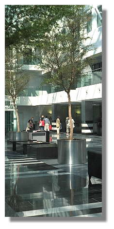 [Foto:schalterhalle-stadtsparkasse-baeume.jpg]