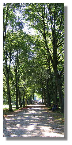 [Foto:schnappschuss-rombergpark-denkmaltag.jpg]
