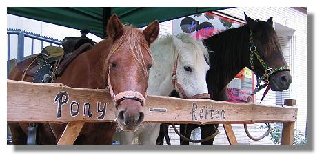 [Foto:erntemarkt-hoerde-2005-ponyreiten.jpg]