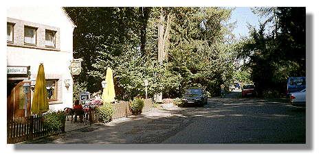 [Foto:steinhausen-restaurant.jpg]