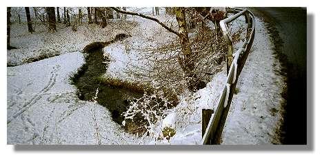 [Foto:wannebach-unterquert-wannestrasse.jpg]