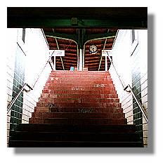 [Foto:brackel-treppe.jpg]