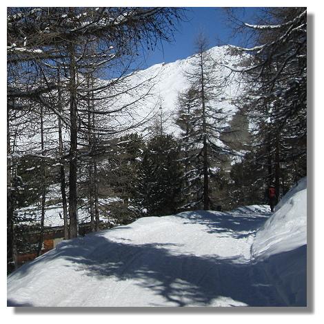 [Foto:riffelalp-wanderwege-winter.jpg]